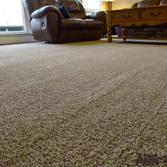 Wet Carpet Repair, Carpet, Maryland